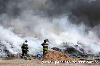 Em 1 ano, Piracicaba registrou 591 incêndios em vegetações - jornaldepiracicaba.com.br