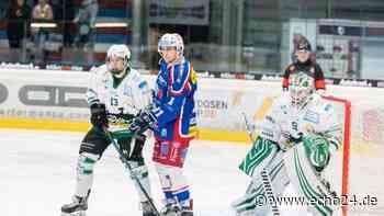 Eishockey Heilbronn: Eisbären verpflichten Heintz-Brüder aus Bietigheim   Regionalsport - echo24.de