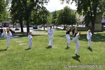 Taekwondo: Fernöstliche Kampfkunst im Oberwarter Stadtpark - Oberwart - meinbezirk.at