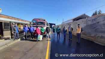 Trabajadores ProEmpleo de Tomé y ONG Forjadores donaron mascarillas y alcohol gel a empresas de transporte - Diario Concepción