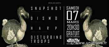 Snapshot / Dismo / Harp / Disturbing Troops l'Humus l'Humus 7 mars 2020 - Unidivers