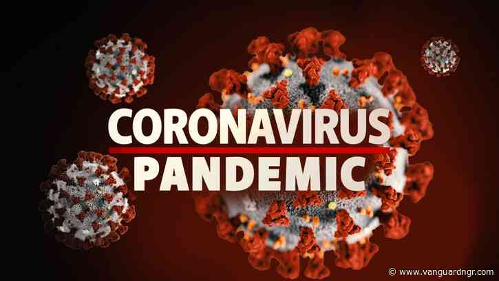 Post-Pandemic: How to save economy  from collapse  — Experts