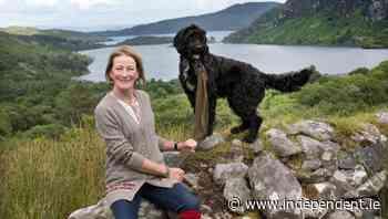 My cultural life: Gemma Billington, painter - Independent.ie