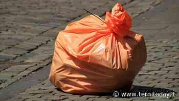 """Rifiuto """"selvaggio"""" a Terni, nuovo blitz in piazzale Bosco: in due finiscono nei guai - TerniToday"""