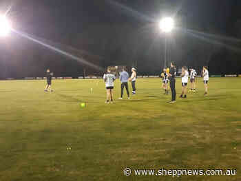 Football and netball clubs return to training - Shepparton News