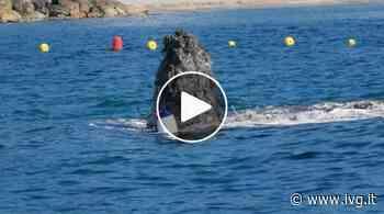 """Un """"oggetto misterioso"""" in mare tra Loano e Borghetto: è il macchinario per la sorbonatura del fondale del porto - IVG.it"""