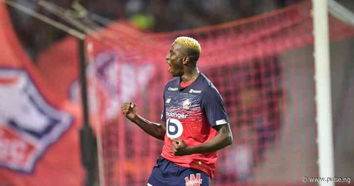 Lille owner confirms the club has received 'multiple offers' for Nigerian star Victor Osimhen