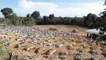 Covid-19: Brasile quarto al mondo per vittime - GIORNALE DI PUGLIA - Giornale di Puglia
