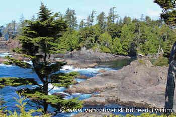 West Coast resorts cautiously prepare to welcome tourists again - vancouverislandfreedaily.com