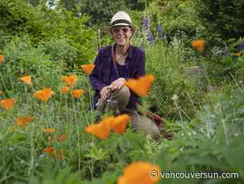 Vancouver Métis herbalist helps seed reconciliation with medicine wheel garden