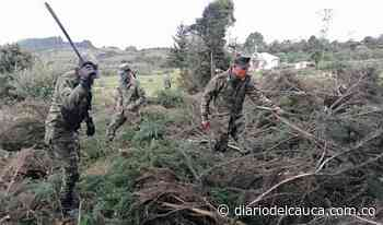Así fue la jornada ambiental de recuperación en Saboyá, Boyacá - Diario del Cauca