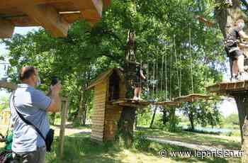 Choisy-le-Roi : les acrobates se pressent pour tenter l'aventure dans les arbres - Le Parisien