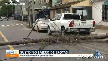 Caminhão-baú arrasta fiação elétrica e derruba poste no bairro de Brotas, em Salvador - G1