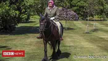 Coronavirus: Queen seen in public for first time since lockdown, riding pony