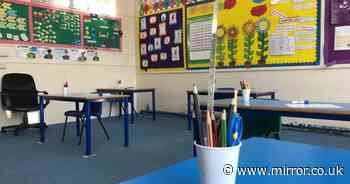 Inside English primary school reopening with 'bubble' classes of nine pupils
