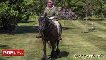 Coronavirus: Queen seen in public for first time since lockdown, riding pony - BBC News