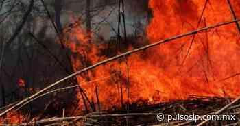 Se reducen los incendios forestales en Rioverde - Pulso de San Luis