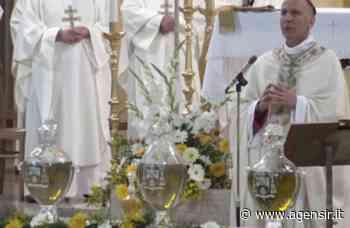 """Messa crismale: mons. Antonazzo (Sora), """"lo Spirito abita le parole umane e le divinizza"""" - Servizio Informazione Religiosa"""
