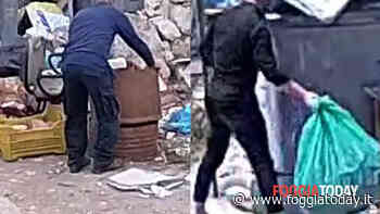 Sporcaccioni e incivili nella città di San Pio: beccati e multati in 67. E a giugno arrivano le fototrappole mobili - FoggiaToday