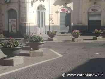 Misterbianco, avviati interventi di manutenzione del verde pubblico - CataniaNews.it