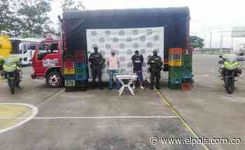 Incautan cargamento de marihuana camuflado entre verduras en Yotoco, Valle - El País
