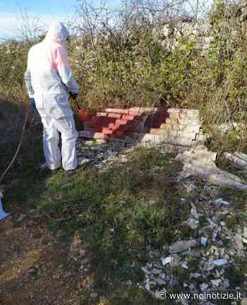 Martina Franca: spesi quasi quarantamila euro per rimuovere rifiuti buttati illecitamente - Noi Notizie. - Noi Notizie