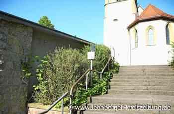 Rutesheim: Tagpfauenauge und Eidechse fühlen sich wohl - Rutesheim - Leonberger Kreiszeitung