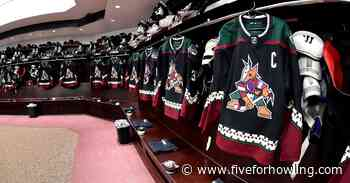 Arizona Coyotes to wear kachina jerseys when play resumes - Five for Howling