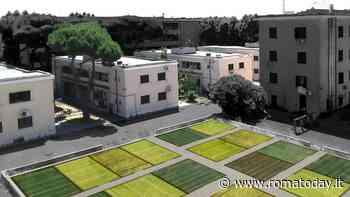 Fiumicino, no agli sprechi: per i palazzi Ater la Regione punta su efficientamento energetico e orti urbani - RomaToday