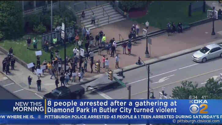 8 People Arrested At Protest At Diamond Park In Butler