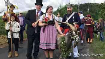 600 Jahre alte Tradition Alle Jahre wieder: Geißbock-Versteigerung in Deidesheim   Ludwigshafen   SWR Aktuell Rheinland-Pfalz   SWR Aktuell - SWR