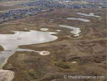 Tank: Efforts to preserve Saskatoon's Northeast Swale dealt blow