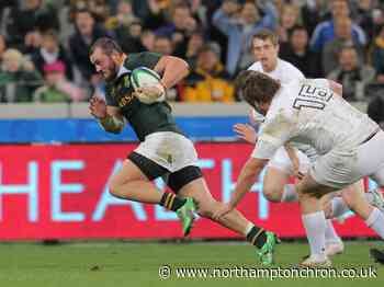 South African forward is on his way to Saints - Northampton Chronicle and Echo
