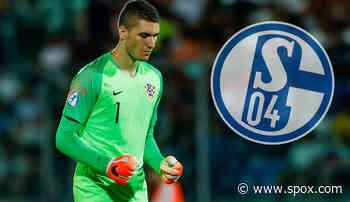 FC Schalke 04 - News und Gerüchte: S04 und SC Freiburg buhlen angeblich um Zagreb-Keeper - SPOX