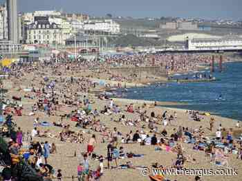 Coronavirus: Brighton council bans dogs from beaches
