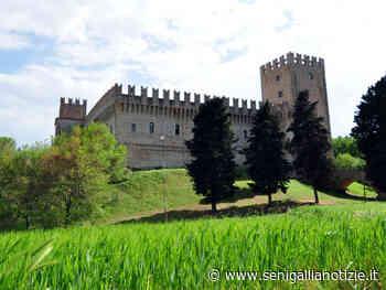 Tolentino, pronti alla riapertura il Castello della Rancia e il Museo dell'Umorismo - Senigallia Notizie