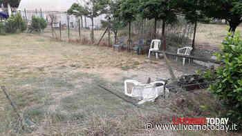 """Stagno, vandali danneggiano l'area di sgambatura per cani. Giommetti: """"Indignata per quanto accaduto"""" - LivornoToday"""