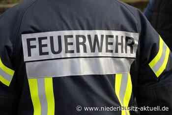 Guben: Brandstifter beißt Feuerwehrmann in den Finger - NIEDERLAUSITZ aktuell