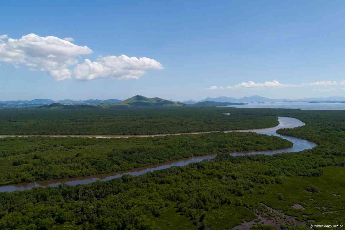 Esvaziamento e incógnita: o destino incerto da APA de Guapimirim e do Núcleo Teresópolis - O Eco