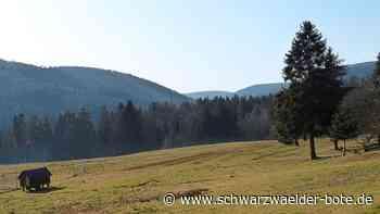 Bad Wildbad: Damit es nicht zu Verwechslungen kommt - Bad Wildbad - Schwarzwälder Bote
