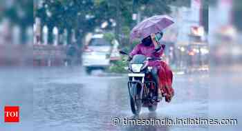 Monsoon hits Kerala; north to get 'good' rain