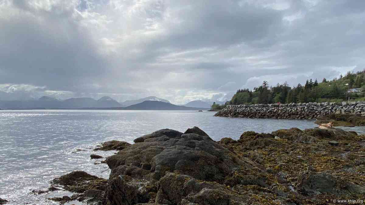 During summer without cruise ships, researchers will study fecal bacteria on Southeast Alaska beaches