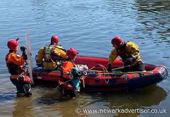Sheep rescued from River Trent by firefighters - Newark Advertiser