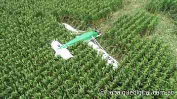 Una joven piloto de Tapalqué debió aterrizar de emergencia en un maizal - Tapalque Digital