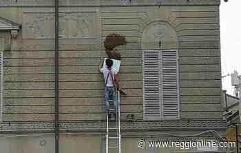 Reggio Emilia, sciame di api invade piazza Prampolini. FOTO & VIDEO - Reggionline