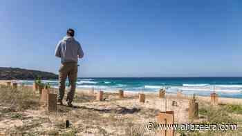 Australian beach life at risk as environment drops down agenda - Al Jazeera English