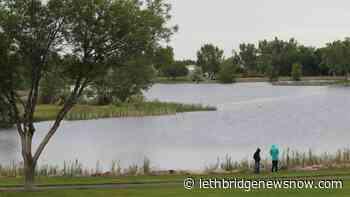 City of Lethbridge celebrating Environment Week - Lethbridge News Now
