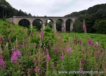 We must work together to protect the environment - Oliver Harmar - Yorkshire Post