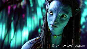 Avatar 2 crew land in New Zealand to restart filming despite border closure