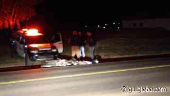Motociclista morre em acidente com carro em rodovia de Turvo - G1
